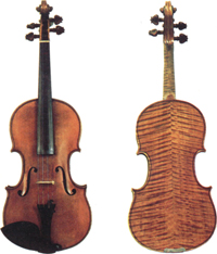 El Viol&iacute;n