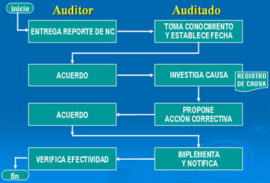 Auditor&iacute;a. Seguimiento y verificaci&oacute;n de efectividad