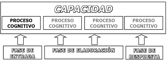 Procesos cognitivos