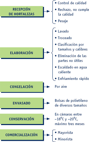 Marketing. Proceso de producción (segunda parte)