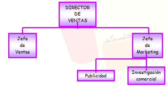 - Evolución de la organización del departamento de marketing II
