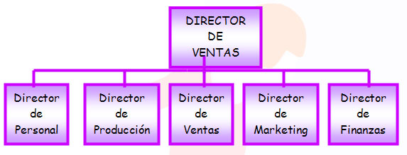 Evolución de la organización del departamento de marketing II
